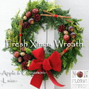 【数量限定】【ナチュラルスタイル】『フレッシュ クリスマスリース LL-サイズ』直径45cm リース 生花 アップル りんご ユーカリ クリ…