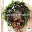 フレッシュ クリスマスリース『ユーカリポポラス』-LLサイズ-【直径約45cm】ユーカリポポラス フレッシュリース 生花リース クリスマス…