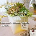 【あす楽】『多肉植物キャンドル-スクエア-』フェイクグリーン 寄せ植え LED おしゃれ カフェ 誕生日 ギフト プレゼント 母の日 父の日…