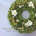 【送料無料】春一番に★『グリーンリーフ&ミモザ with ホワイトローズ』リース〜約33cm〜【ドライフラワー】【誕生…
