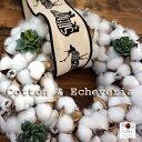 冬のインテリアに☆『コットンwith多肉植物』リース【ドライフラワー】【インテリア】【多肉植物】【北欧】【ギフト】【クリスマスリー…
