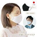 夏 冷感 冷やし シルク マスク 日本製 保冷 冷たい 外出用 日本 洗える 保冷剤 接触冷感 立体 絹 メンズ レディース …