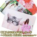 【写真入りUSBメモリーカード】〜piccola felicita〜 写真 入り USB 規格 USB2.0 容量 8GB カード型 手のひらサイズ …