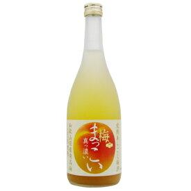 完熟あらごし梅酒 梅まっこい 720ml瓶 メルシャン(株) 梅酒 ギフト 増税