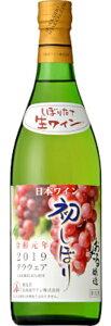 北海道ワイン おたる 初しぼり デラウェア 甘口白