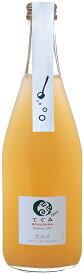 京都のワイナリー ギフト プレゼント てぐみプチ デラウェア白辛口 500ml瓶 1本 京都府 丹波ワイン