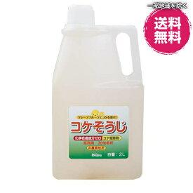 コケそうじ 業務用濃縮液 2L (20倍希釈) パネフリ工業 コケ 駆除 退治 コケ除草剤