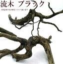天然流木 ブラック 1個(サイズ・約15〜20cm位)