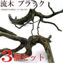 天然流木 ブラック 3個セット(サイズ・約15〜20cm位)