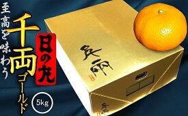【予約受付中】日の丸みかん 千両ゴールド 特秀品 Mサイズ 5kg 産地直送 送料無料