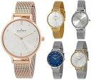 【選べる5カラー】スカーゲン 腕時計 レディース 北欧時計 アニタ クリスタル メッシュブレスレット 女性 誕生日 彼女 SKW2151 ビジネス ユニセックス 誕生日 お祝い ギフト