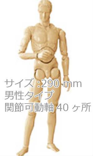 ボークス社 CD-210 マッチョボディ サイズ290mm