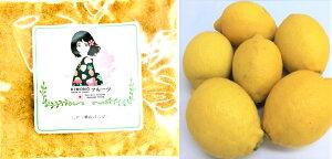 レモンパウダー(瀬戸内レモン) レモン粉末 100g(50g×2袋) 【送料、消費税込み】国産レモンパウダー