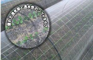 防虫ネット サンサンネット SL2700 0.8mm目 2.1m ×100m( パイプハウス 農業用ネット 野菜 栽培 農具 ハウス栽培 害虫 ビニールハウス 防虫網 家庭菜園 虫よけ 虫除けネット 防虫ネット 農業用資材