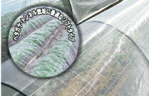 防虫ネット サンサンネット SL3200 0.6mm目 1.35m×100m (ビニールハウス ビニール ハウス 部品 トンネル 栽培 資材 家庭菜園 虫対策 害虫 農業用 園芸ネット 虫よけネット 虫除け 農業 用 防虫 網 ネ