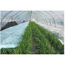 パスライトブルー 幅150cm×長さ200m ( べたがけ 霜除け 霜よけ カバー 園芸 保温シート 農業資材 保温資材 農業用資…