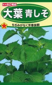 大葉青しそ 種子 たね 品番1330
