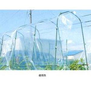 菜園雨よけシート厚さ0.05mm×長さ5m×幅3m(雨除けシート 菜園アーチパイプ ジョイントパイプ 農業資材 園芸用支柱 農業用 園芸支柱 家庭菜園 園芸用品 アーチ支柱 アーチ型支柱)