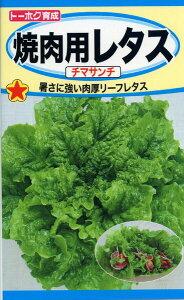 焼肉用レタス チマサンチ 種子 たね 品番3343