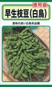 早生枝豆 (徳用袋) 種子 たね 品番1586