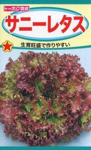 サニーレタス 種子 たね 品番3479
