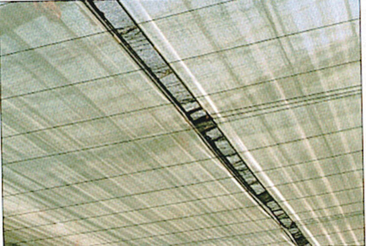 ビニールハウス用 サニーコート(内張用)X幅200cmX長さ100m ( 内張り ハウス栽培 ビニルハウス 保温シート 農業資材 保温資材 農業用資材 園芸用資材 園芸資材 ガーデニング ガーデン用品 農作業 家庭菜園 便利 グッズ)