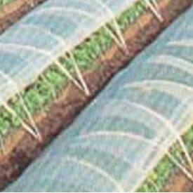 農ビ 梨地 長さ100m×厚さ0.05mm×幅185cm 防寒 保温資材 トンネル ビニールハウス、裾、サイドに適したビニールです。 ( ビニルハウス トンネル 用 ビニール 家庭菜園 ガーデニング ガーデン用品 農作業 道具 園芸用品 農業用品 農業用資材 農業資材 便利 グッズ)
