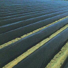 黒マルチ 厚さ0.05mmX幅180cmX長さ100m 2本セット 雑草の抑制効果が高い畑用黒マルチです。(マルチ シート 雑草防止シート マルチシート ざっそう 雑草対策 家庭菜園 農業 農業用 資材 農業用資材 農作業 農業資材 園芸 園芸用 園芸用品 園芸グッズ 園芸資材 園芸用資材)