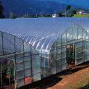 農ポリ 厚さ0.03mm×幅210cm×長さ100m 3本セット ( 園芸用具 園芸道具 農業用資材 ガーデン マルチシート 透明 マル…