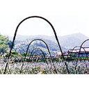 アーチパイプ ネット栽培用 径16mm×幅80cmx高さ30cm ( 雨よけ 雨除け パイプ支柱 接続 部材 部品 ガーデニング 野菜…