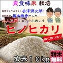 Fuzimoto_hn10