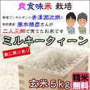 Fuzimoto_mq05_2