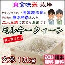 Fuzimoto_mq10
