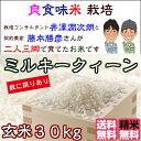 Fuzimoto_mq30