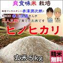 Inoue_hn05_h28