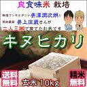 Inoue_kn10_h28