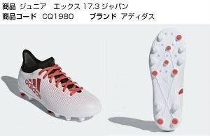 エックス 17.3-ジャパン HG J CQ1980