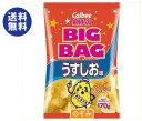 【送料無料】カルビー BIG BAG ポテトチップス うすしお味 170g×12個入 ※北海道・沖縄は別途送料が必要。
