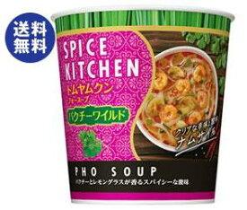 【送料無料】日清食品 スパイスキッチン トムヤムクンフォースープ パクチーワイルド 27g×12(6×2)個入 ※北海道・沖縄は別途送料が必要。