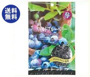 【送料無料】共立食品 ワイルドブルーベリー 52g×10袋入 ※北海道・沖縄は別途送料が必要。