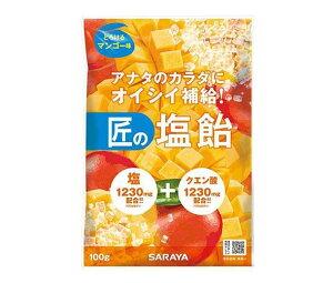 送料無料 サラヤ 匠の塩飴 マンゴー味 100g×20本入 ※北海道・沖縄は配送不可。