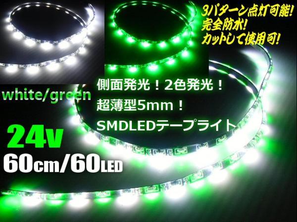 24Vトラック用/側面2色発光切替SMDLEDテープライト/60cm・60連球/白色⇔緑色