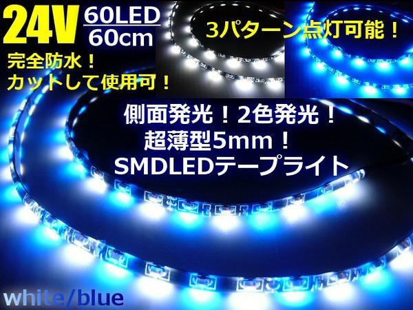 24Vトラック用/側面2色発光切替SMDLEDテープライト/60cm・60連球/白色⇔青色