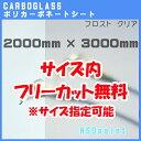 ポリカーボネート板 フロスト(片面)クリア(透明) 5mm厚2000mm×3000mm[サイズ内に変更可能]カーボグラス【AGC】【…
