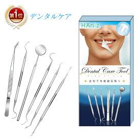 歯石取り スケーラー 6本セット ステンレス製 自宅用 デンタルツール 歯 ヤニ 歯垢 しこう取り
