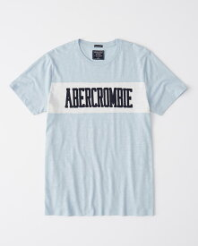 Abercrombie&Fitch 正規品 (アバクロンビー&フィッチ) アップリケ ロゴ カラー ブロック Tシャツ (Applique Colorblock Logo Tee) メンズ (Light Blue And White) 新品