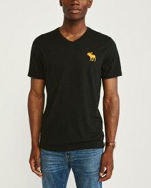 Abercrombie&Fitch 正規品 (アバクロンビー&フィッチ) ビックムース VネックTシャツ (Exploded Icon V-Neck Tee) メンズ (Black) 新品