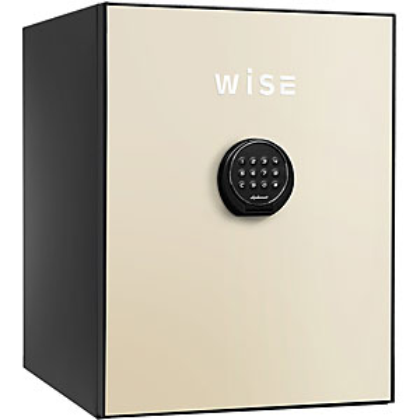 【据付設置費無料】diplomat(ディプロマット)wise耐火金庫<テンキー>(クリーム) WS500ALC 8809366198589