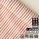 遠州綿紬 S-110 -杏(あんず)-綿 着物 洗える着物 大人可愛い おしゃれな きれいめ