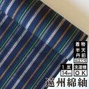 遠州綿紬 S-22 -薫風(くんぷう)- 木綿反物